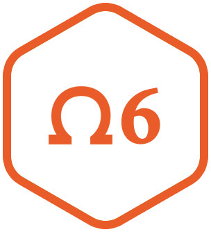 Омега 6