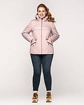 Женская демисезонная куртка батал - М 3652, фото 3