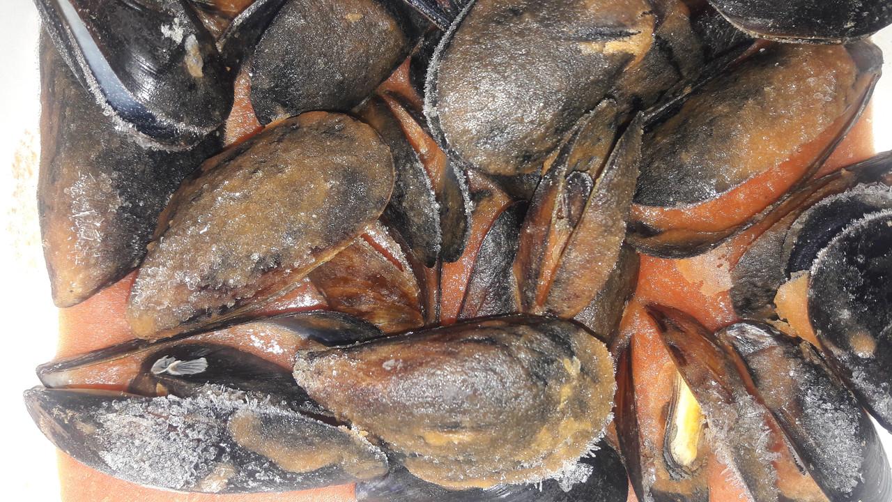 Мидии в ракушке в соусе (на выбор - грибной, томатный, каперсово-сливочный), 550грамм