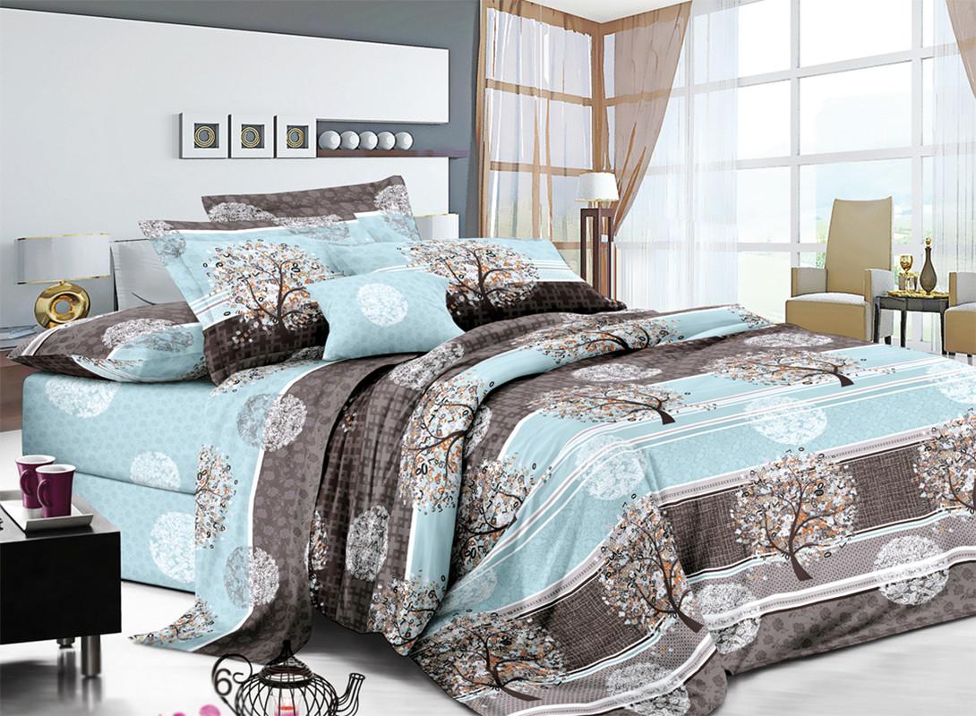 Двуспальный комплект постельного белья евро 200*220 хлопок  (13841) TM KRISPOL Украина