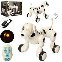 Радиоуправляемая робот-собака (М 619)