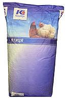 Стартер для вирощування птиці 30% концентрат, БМВД (25кг)   KOUDIJS Каудайс (™ D-МІКС) Україна-Голландія