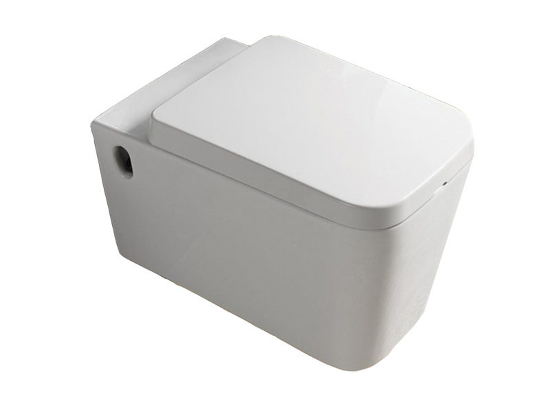 Чаша подвесного унитаза с сиденьем Aqua 9423W белый NEWARC