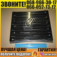 Комплект болтов двигателя (пр-во PAYEN) (арт. HBS534)