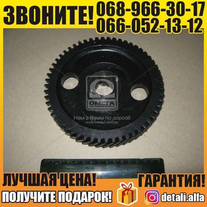 Шестерня вала распредилительного ГАЗ 2410, 3302 (армамид.) (пр-во Украина) (арт. 24-1006020-01)