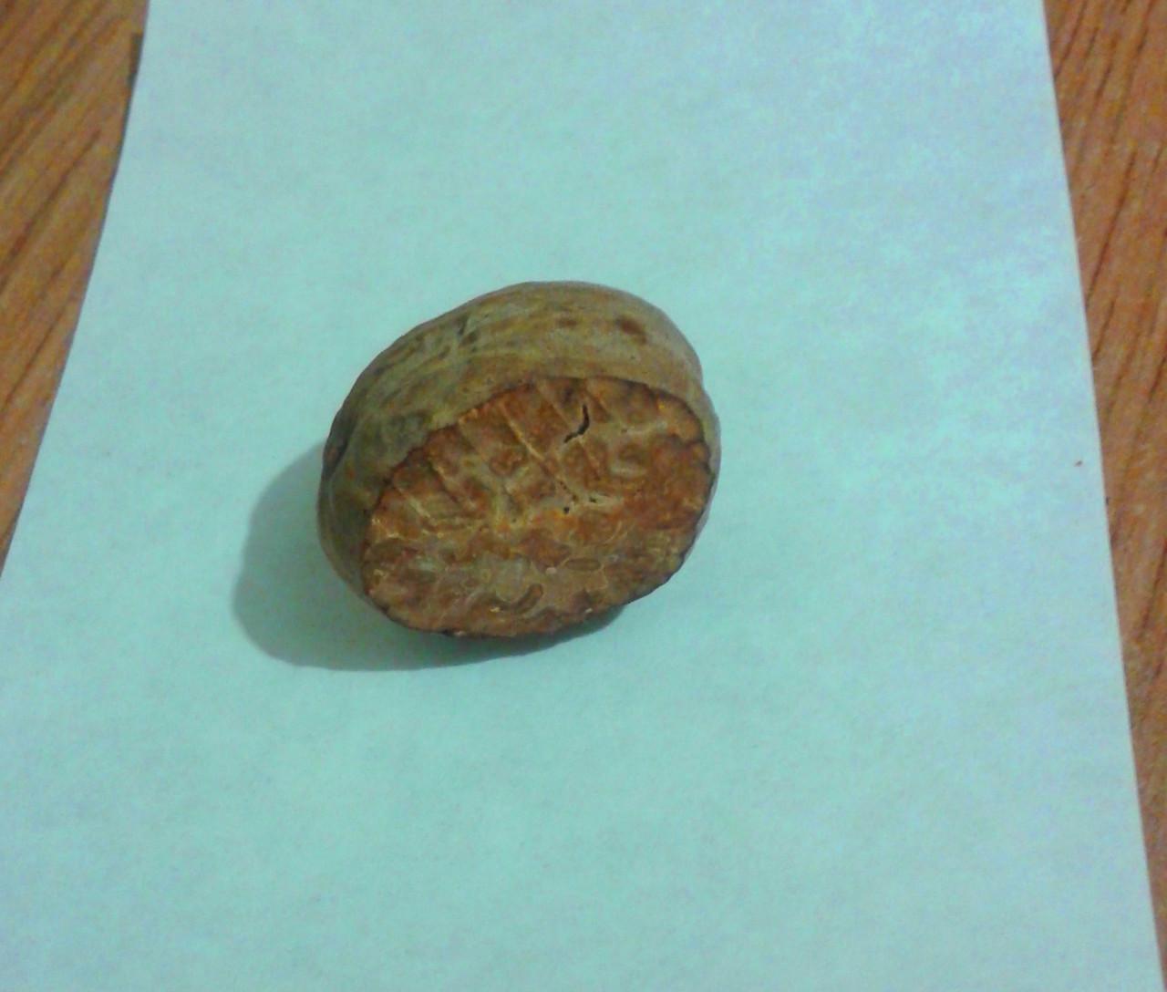 Мускатный орех, 50 г