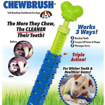 Игрушка для чистки зубов у собак Сhewbrush