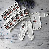 Набор бодики со штанишками с цифрами на каждый месяц до года. Размер 3, 4, 5, 7, 8, 9, 10, 11, 12 мес, фото 1