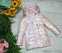 Куртка для девочки осень  весна код 280  размеры на рост от 110 до 122    (104 нет 128 нет), фото 1