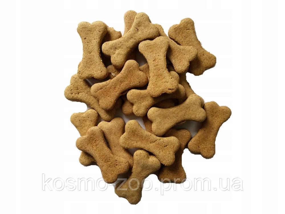 Печенье для собак средних и мелких пород Бош (Bosch) косточки с мясом ягненка, 1 кг
