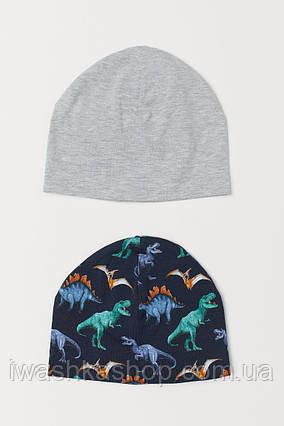 Комплект из двух трикотажных шапок с динозаврами на мальчика 1,5 - 4 года, р. 92 - 104, H&M