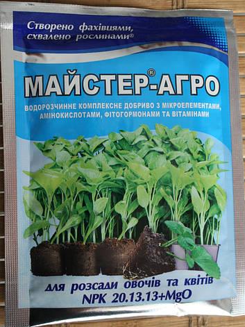 Мастер-Агро для россады овощей и цветов 25 г, фото 2