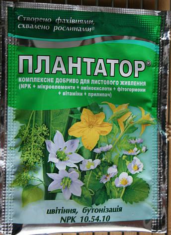 Плантатор 10.54.10 цветение, бутонизация 25 г, фото 2