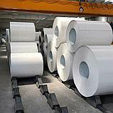 Гладкий Лист 1 мм с Полимерным Покрытием RAL 9010 (Белый 1250 мм) Mittal Steel, фото 5