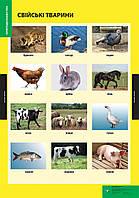Плакат Свійські тварини