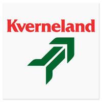 66869 леміх передплужника  (Kverneland)