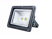 Светодиодный прожектор 100Вт 6500К IP65 (2 линзы раздельное подключение), фото 1