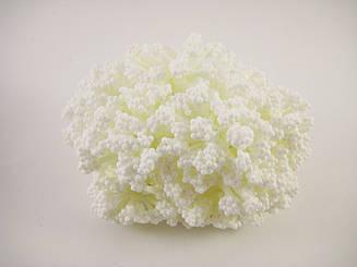 Пупыришки белые для рукоделия на белых ветках. 12шт/пучок.