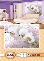 Фотообои Орхидея №64