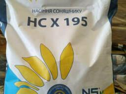 Семена подсолнечника HC X 195 (экстра)