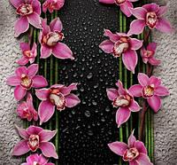 Фотообои Малиновые орхидеи