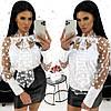 Блуза двійка в горох (4 кольори) АА/-1320 - Білий