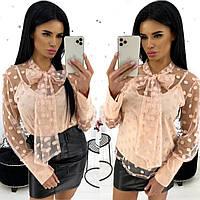 Блуза двойка в горох (4 цвета) АА/-1320 - Пудра, фото 1