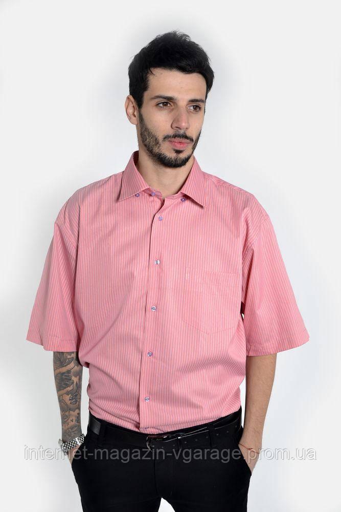 Рубашка 893-5 цвет Коралловый