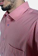 Рубашка 893-5 цвет Коралловый, фото 2