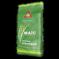 Кукуруза ДМС 3111 (ФАО 310)