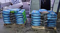 Монсанто ДКС 4590  семена кукурузы ФАО 360 Monsanto насіння кукурудзи