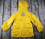Куртка. Вітровка для дівчаток Жовтий Поліестер Baby Line Україна, фото 2