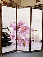 "Ширма ""Орхидея СПА"" 170х150см для салона красоты"