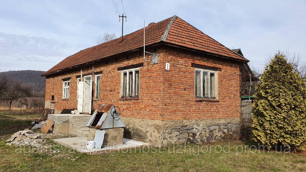 Будинок в с. Невицьке