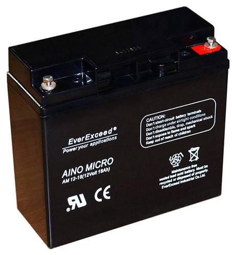 Аккумулятор EverExceed AM 12-18