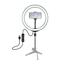 Кольцевая лампа для блогеров (26 см. диаметр кольца), фото 3