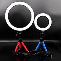 Кольцевая лампа для блогеров (16 см. диаметр кольца) +мини-студийный Трипод, фото 1
