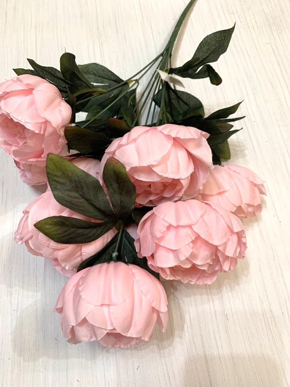 Пион декоративный розовый.