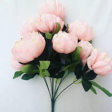 Пион декоративный розовый., фото 3