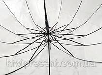 Зонт трость прозрачный с черным ободком без принта (14 спиц), фото 2