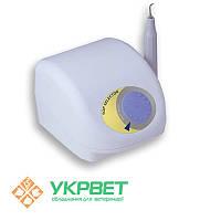 Скалер ультразвуковой Apoza TOP Selector, фото 1
