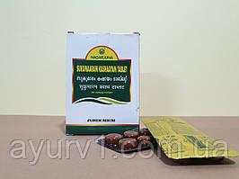 Сукумара кашаям Нагарджуна / Sukumaaram kashaayam tablet Nagarjuna / 100 таб.