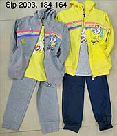 Трикотажный спортивный костюм на девочку оптом, Crossfire, 134-164 рр