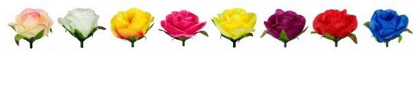 головки розы чайной