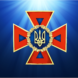 ФОРМА ДСНС