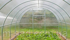 Теплица Садовод -18м²(300*600*200см)поликарбонат 8мм,шаг дуги 1м, фото 3