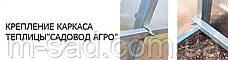 Теплица Садовод -30м²(300*1000*200см)поликарбонат 4мм,шаг дуги 1м, фото 3