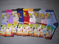 Носки махра для девочек и мальчиков  LHМ 314 ( Б.Д.Р.)