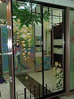 Шкафы-купе, «Акация», краска, Одесса, Херсон, Николаев