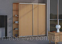 Шкаф-купе 2 двери Стандарт 160х60 h-210, ТМ Феникс, фото 3